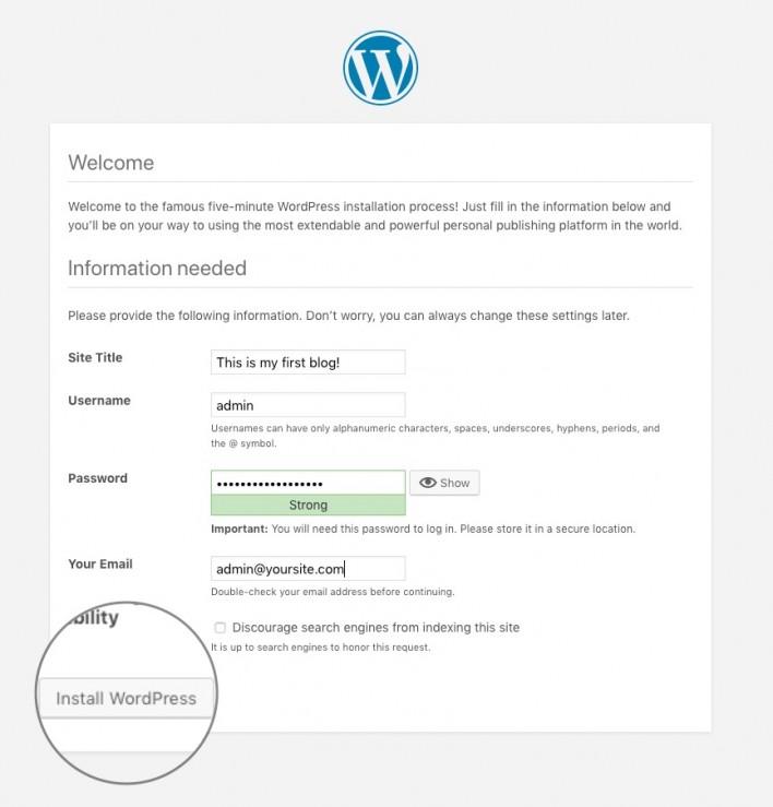wordpress query random posts