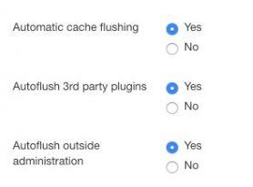 auto flush